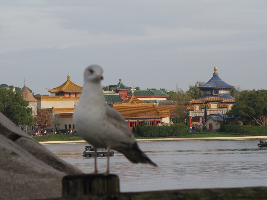 Epcot's China