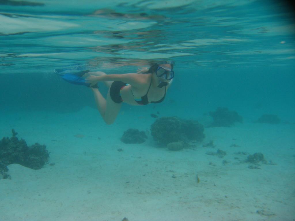 E snorkeling in Moorea