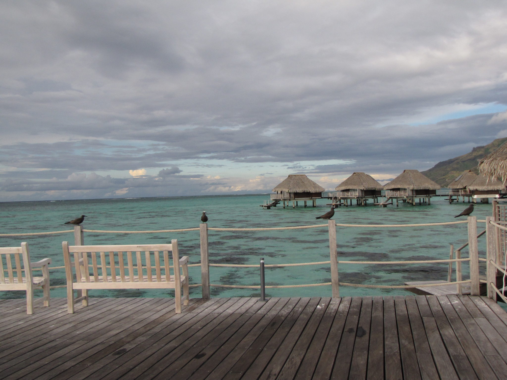 A Fun-filled 4th Day in Mo'orea