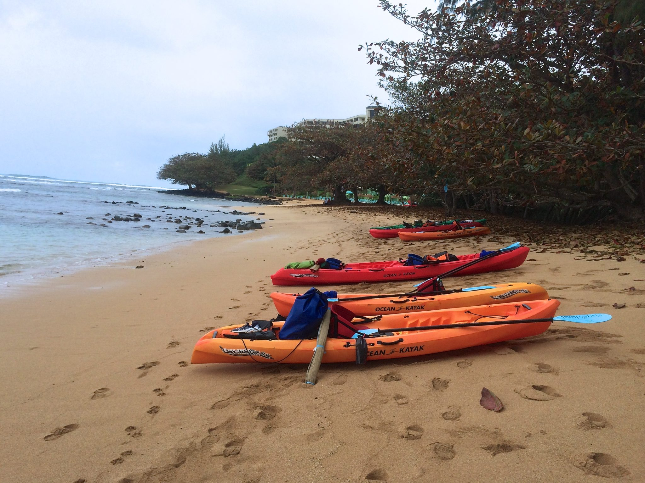Kayak and Snorkel Tour on Hanalei River