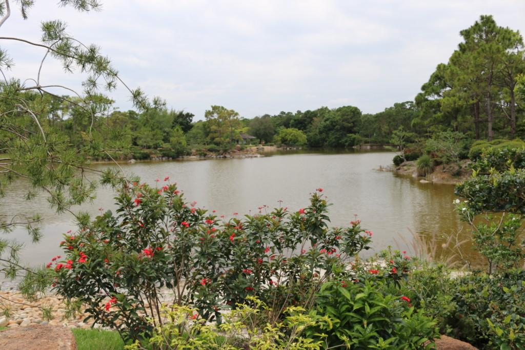Japanese garden = Serenity