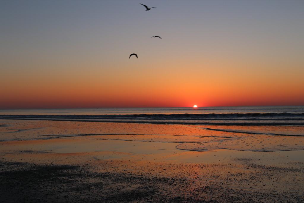sunrise FL style