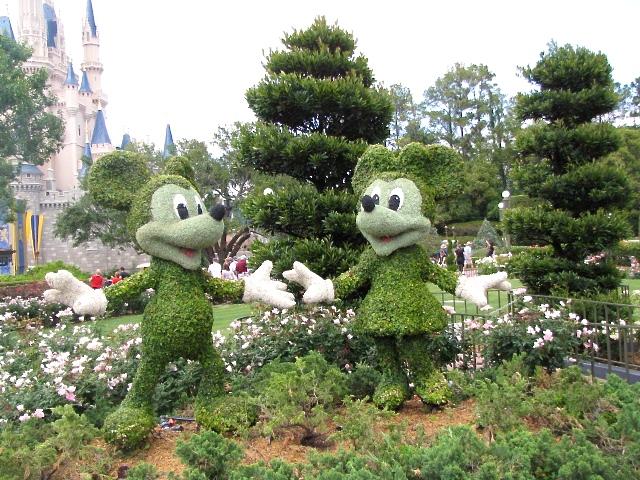 Walt Disney World in Orlando, FL