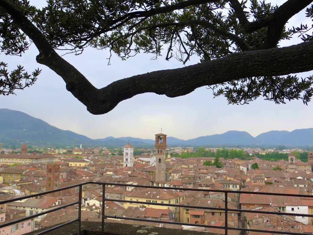 Lucca Views