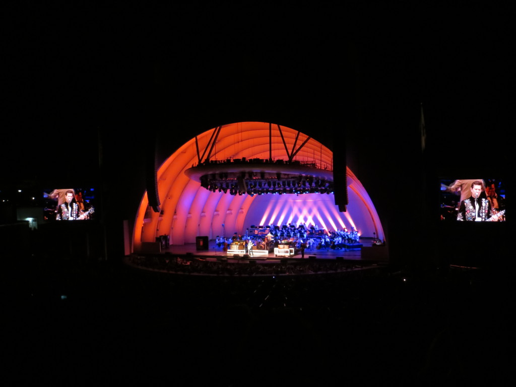 Chris Isaak at the Bowl