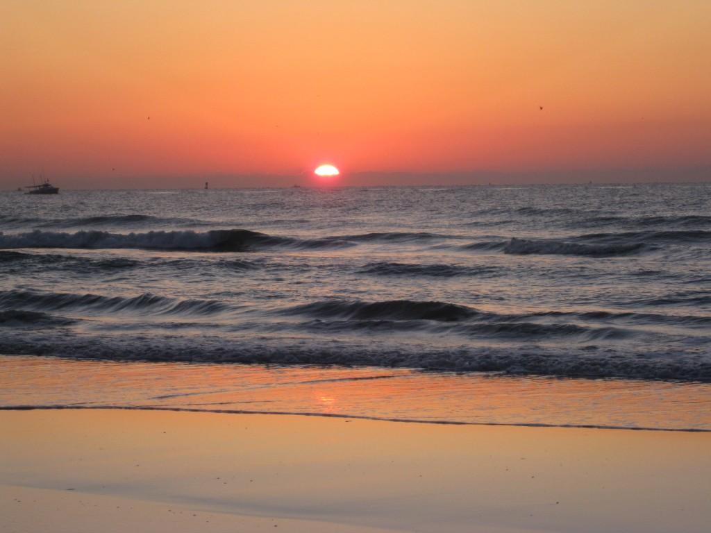 Sunrise in FL