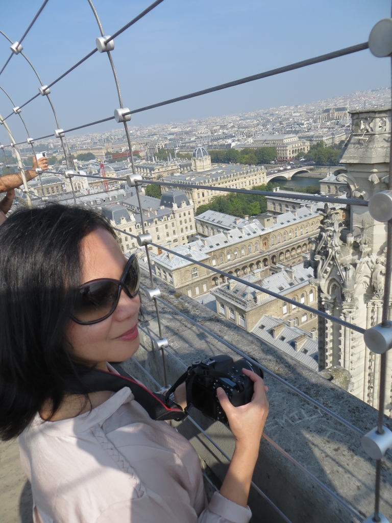 View from the Notre Dame tower