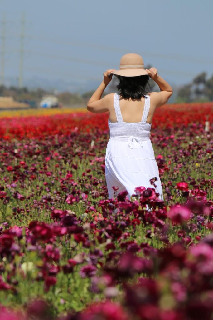 In flower paradise