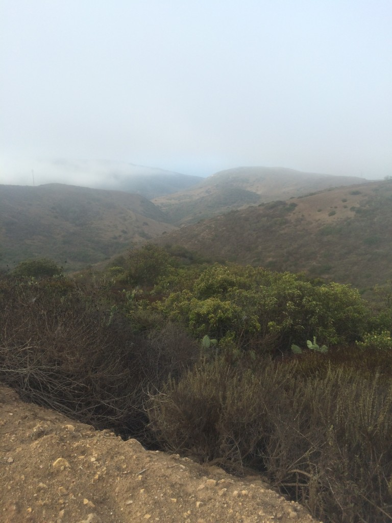 An early hike in OC