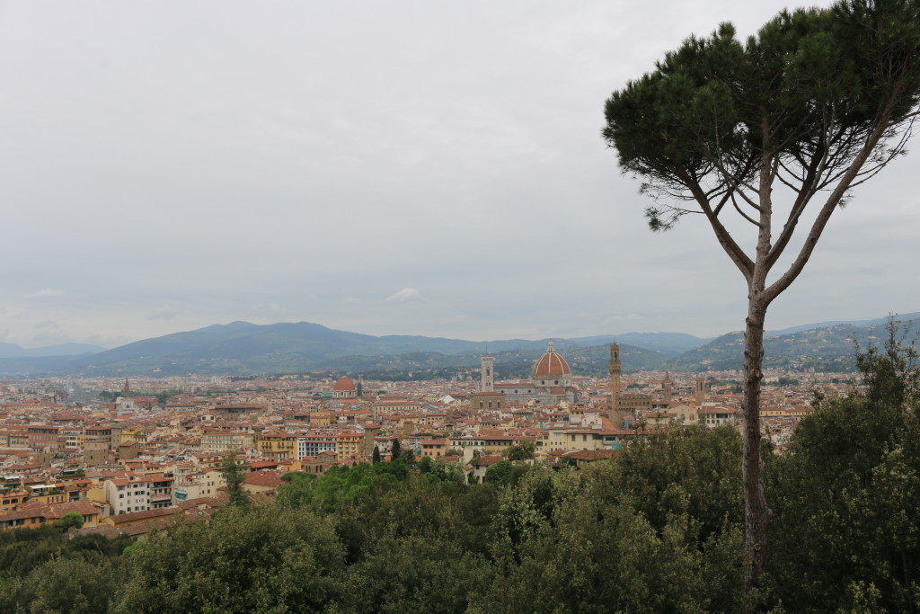 The view of Florence from Fort Belvedere