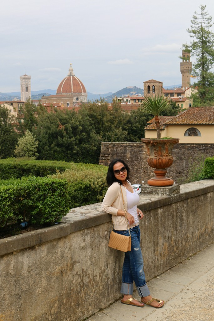 The view from Boboli Gardens