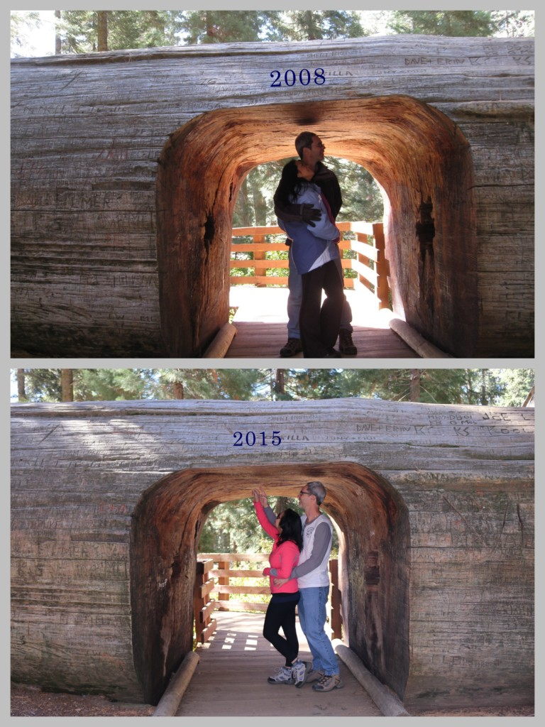 Back to Sequoia - then and now